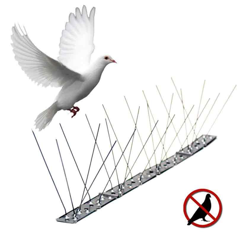 Antidisuasorios para aves.